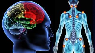 sintomas-de-fibromialgia-cronica